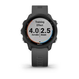 Спортивные часы Garmin Forerunner 245 GPS, Black/Slate (010-02120-10) #1