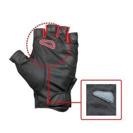 Перчатки HYDRA FINGERLESS /L (SNGLFL-L) #1
