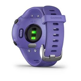 Спортивные часы Garmin Forerunner 45 GPS, Iris, малый размер (010-02156-11) #2