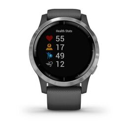 Смарт часы Garmin Vivoactive 4 серые с серебристым безелем (010-02174-03) #1