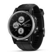 Мультиспортивные часы Garmin Fenix 5S PLUS Glass серебр. с черным ремешком (010-01987-21)